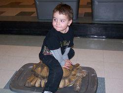 Jack on a turtle