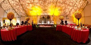 Western backyard BBQ induction reception