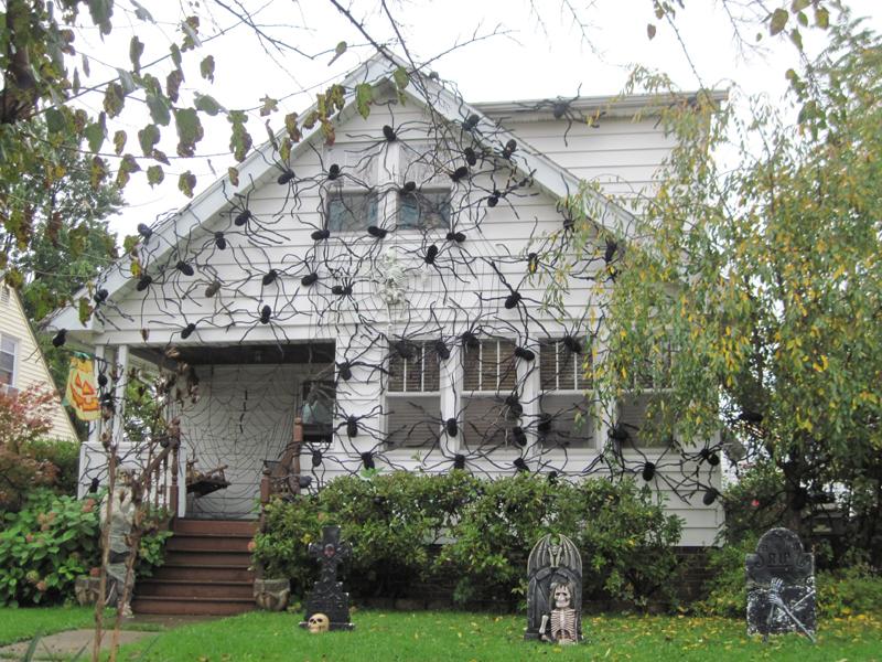 halloween outdoor spider web decoration - Halloween Spider Web Decorations