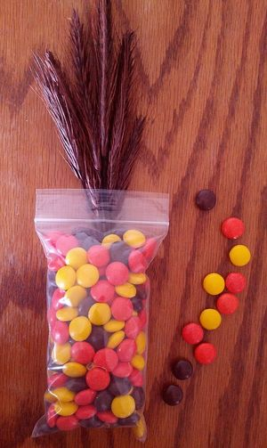 Thanksgiving candy favor ideas